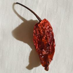 naga chile