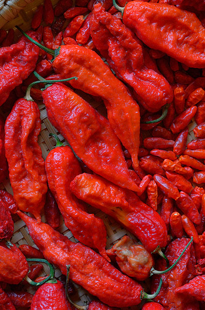 Naga chiles in basket