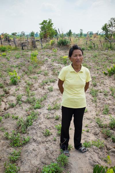 Chhek Sambo Cambodia