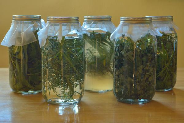 RS Herb Vinegar I