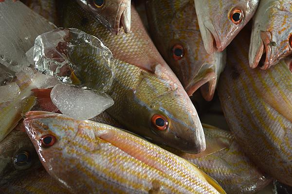 PG Mkt Fish